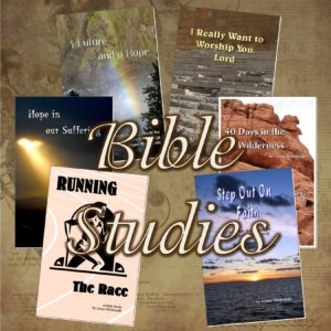 Bible Discussion Guides