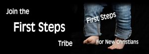 First Steps Tribe – Dive Deep Membership
